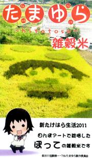 『たまゆら』の『雑穀米』が11月1日から限定500個販売決定!
